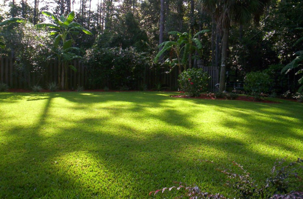 Lawn Pest Control in Jacksonville, FL 32258