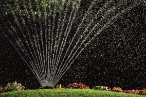When Can I Stop Watering My Lawn in Fall?